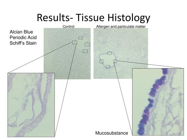Results- Tissue Histology