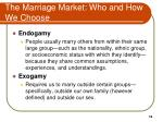 the marriage market who and how we choose