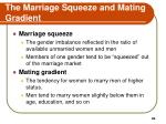 the marriage squeeze and mating gradient