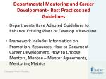 departmental mentoring and career development best practices and guidelines