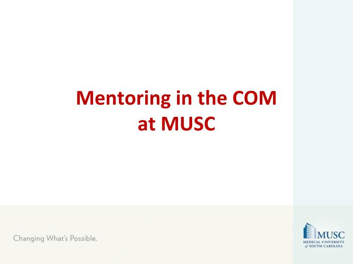 mentoring in the com at musc n.