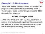 example 2 public comment