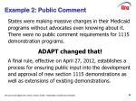 example 2 public comment1