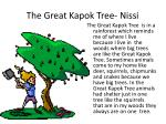 the great kapok tree nissi