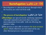 bactofugation