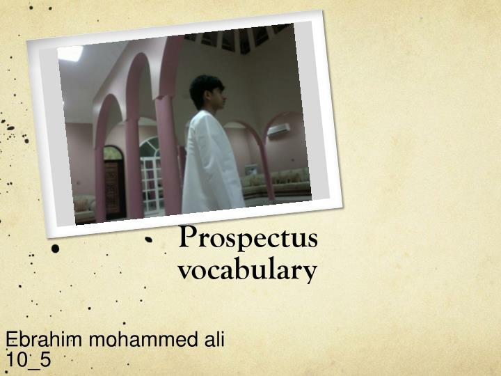 prospectus vocabulary n.