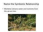 name the symbiotic relationship16