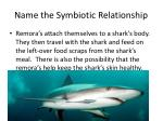 name the symbiotic relationship3