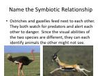 name the symbiotic relationship4