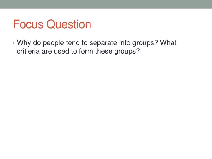 focus question n.