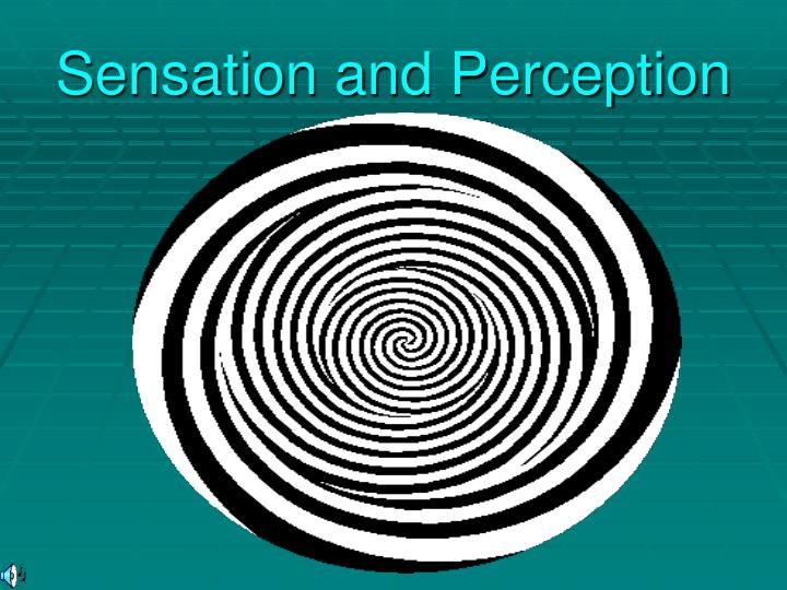 sensation and perception n.
