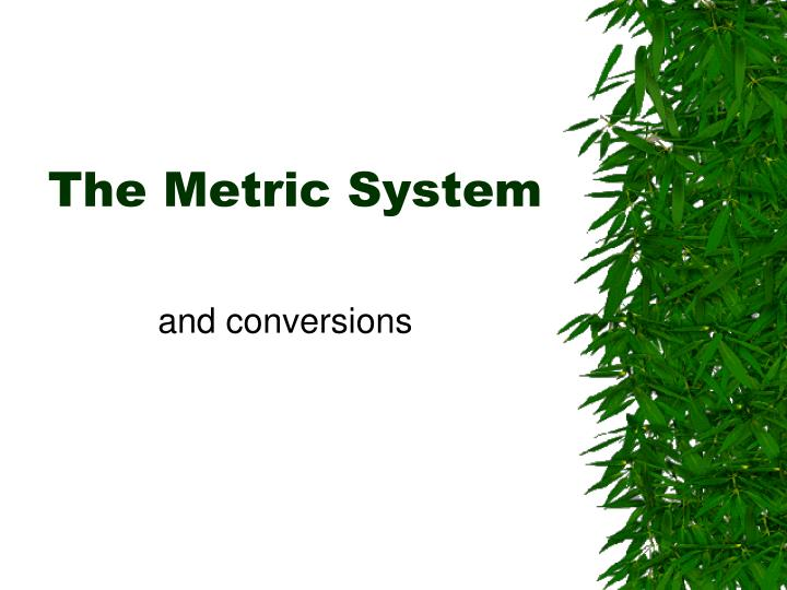 the metric system n.
