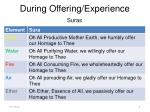 during offering experience