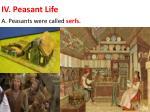 iv peasant life
