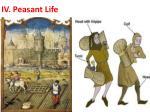 iv peasant life2