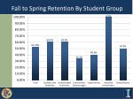 fall to spring retention by student group