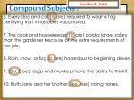 compound subjects10
