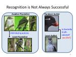 recognition is not always successful