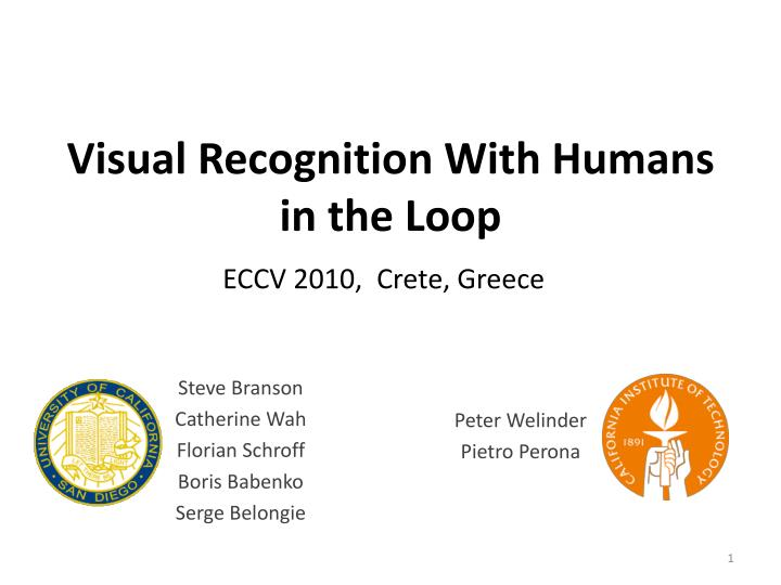 visual recognition with humans in the loop n.
