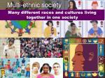 multi ethnic society
