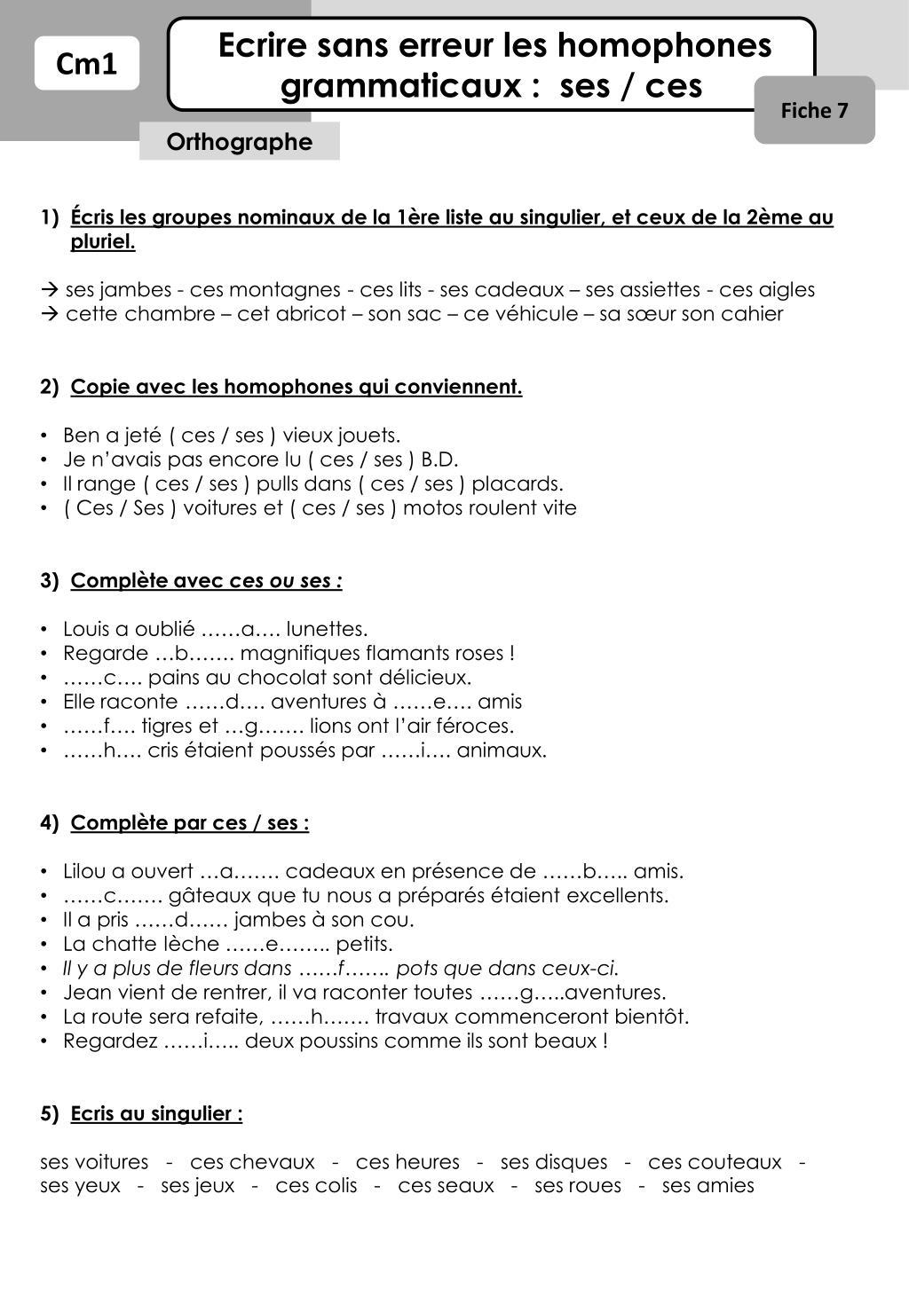 Ppt Ecrire Sans Erreur Les Homophones Grammaticaux Ses Ces Powerpoint Presentation Id 2116567