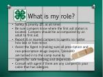 what is my role2