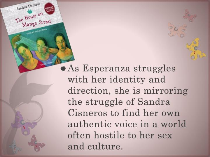 As Esperanza struggles with her identity and direction, she is mirroring the struggle of Sandra Cisneros to find her own authentic voice in a world often hostile to her sex and culture.