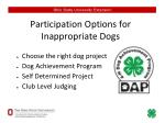 participation options for inappropriate dogs