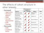 the effects of cohort structure in other teleosts