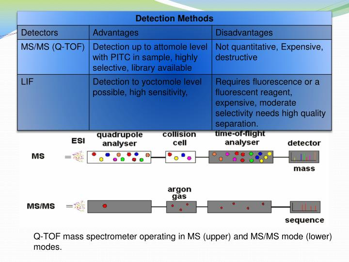 Q-TOF mass spectrometer operating in MS (upper) and MS/MS mode (lower) modes.