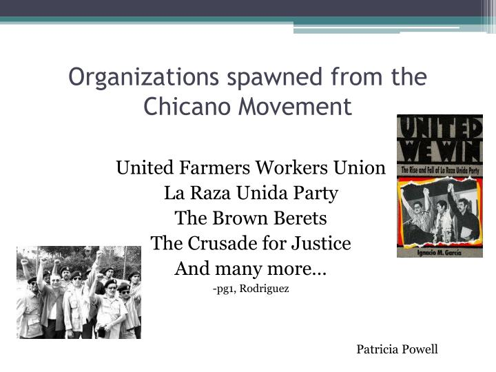 a history of the beginning of the chicano rights movement Similar to other movements of this period promoting civil rights, the chicano movement made in the early twenty-first chicano the history of the.