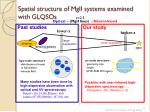 spatial structure of mgii systems examined with glqsos