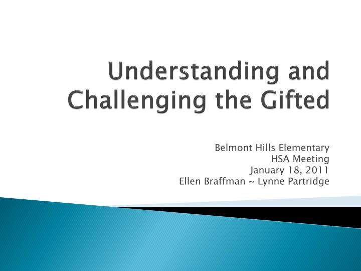 understanding and challenging the gifted n.