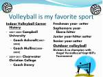 volleyball is my favorite sport