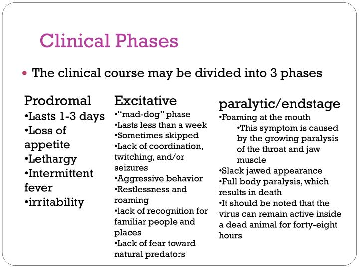 Clinical Phases