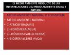 el medio ambiente producto de las interrelaciones del medio ambiente social y natural