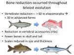 bone reduction occurred throughout teleost evolution