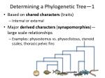 determining a phylogenetic tree 1