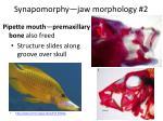 synapomorphy jaw morphology 2