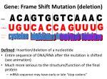 gene frame shift mutation deletion