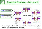 essential elements na and k