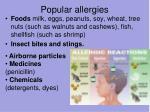 popular allergies
