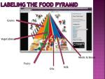 labeling the food pyramid