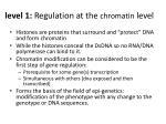 level 1 regulation at the chromatin level