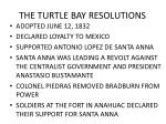 the turtle bay resolutions