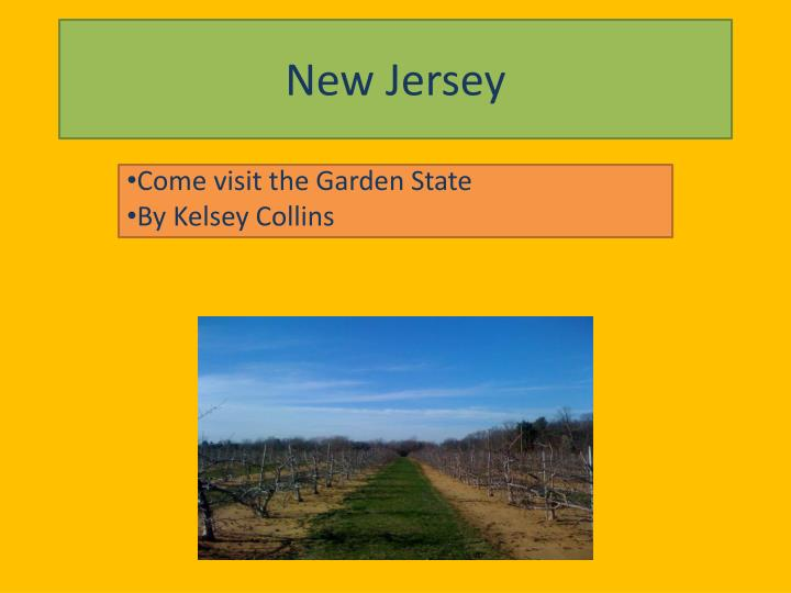 new jersey n.