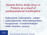 several amino acids occur in proteins as a result of posttranslational modifications
