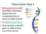 transcription step 2