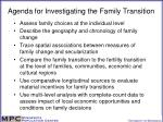 agenda for investigating the family transition