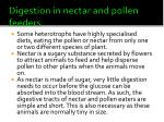 digestion in nectar and pollen feeders